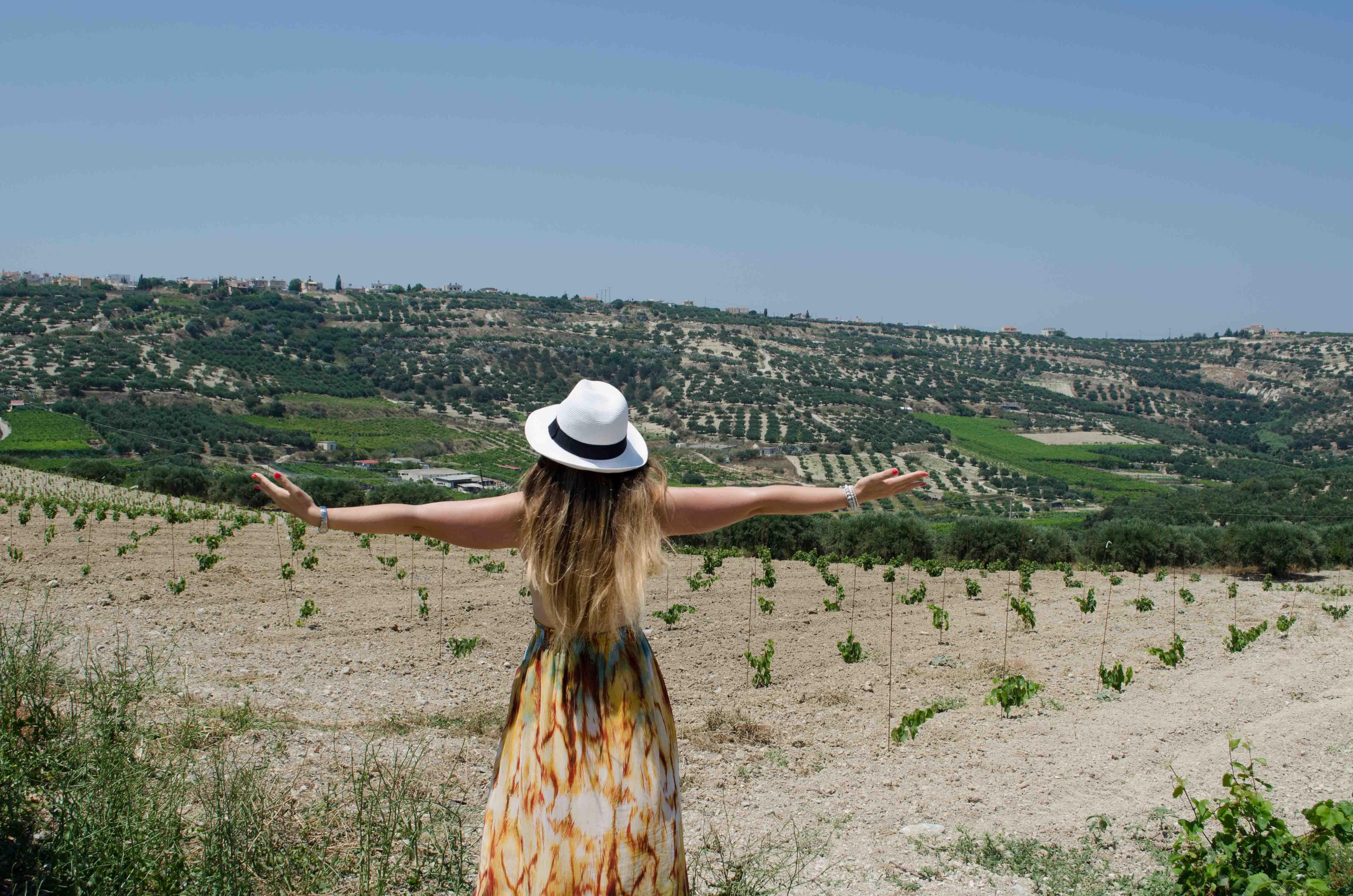 Boutari Winery