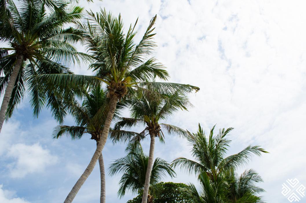 The Briza Beach Resort Koh Samui-9