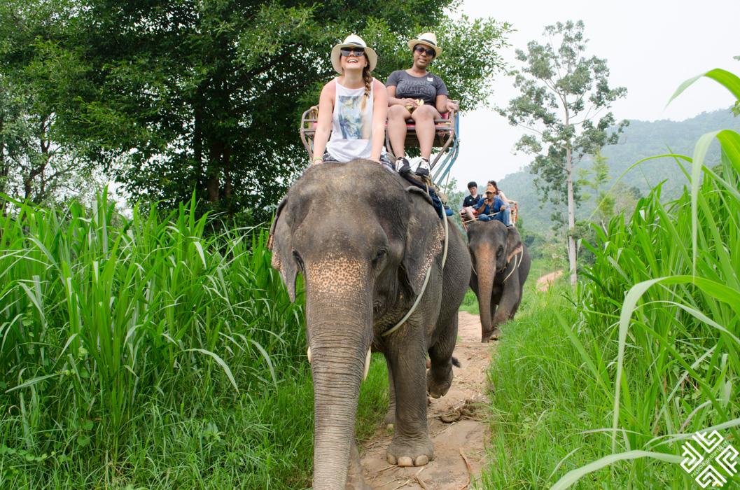 Namuang safari park-3