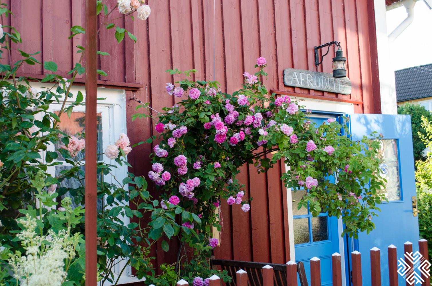 stockholm_archipelago_sandhamn-19