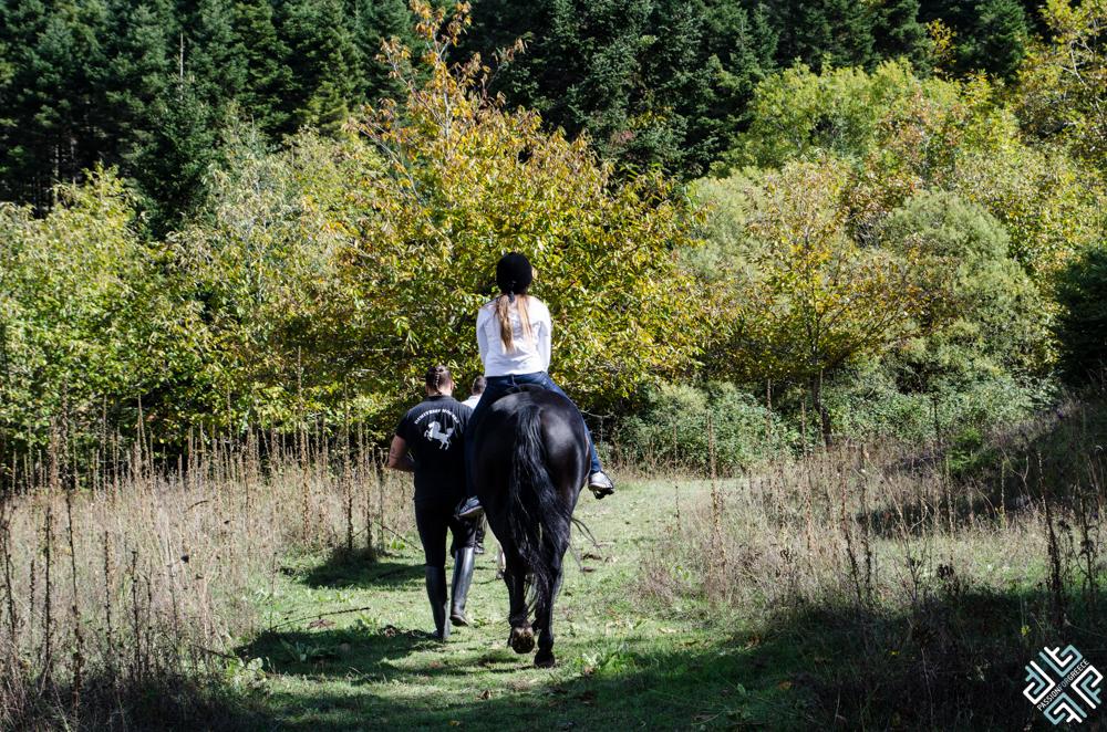 oreini-nafpaktia-horseriding-2